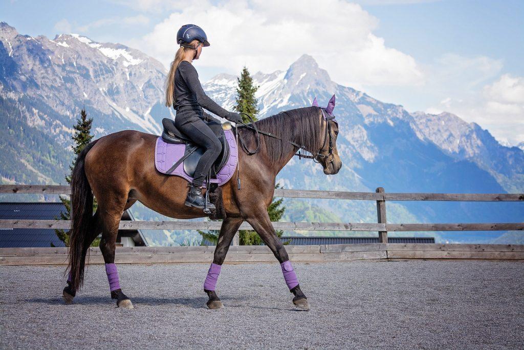 רכיבה מערבית על סוסים – מה המשמעות של הסגנון הזה?