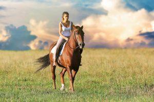 חוות סוסים בית אורן